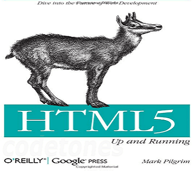 Top 8 Professional HTML5 Learning Books For Beginner to Advanced