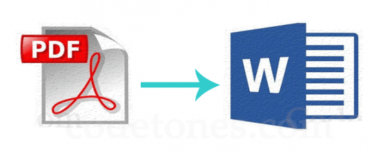 Convert PDFs into Microsoft Word