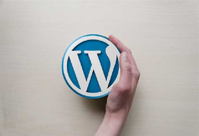 How To Build Own Website Easily With WordPress