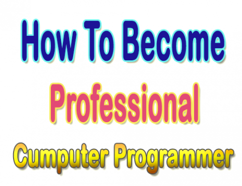 Professional Computer Programmer