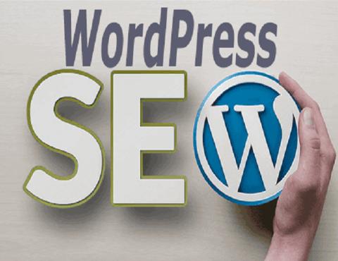 WordPress Website SEO