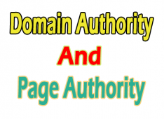 Domain Authority or the Page Authority