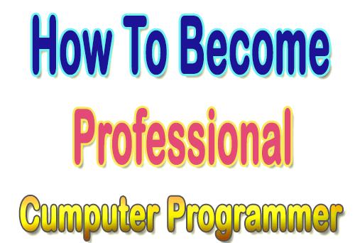 Professional Computer Programmer